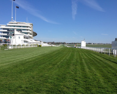 Derby Day, any day... Epsom Downs: Spoke 5 W