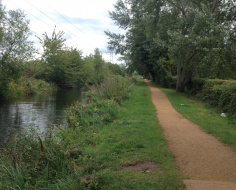 Slough Arm Canal - a quiet cul-de-sac: Spoke 8 link