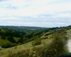 The Box Hill Loop: ZigZig accomplished