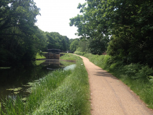 Basingstoke Canal at St John's: Spin-off 8