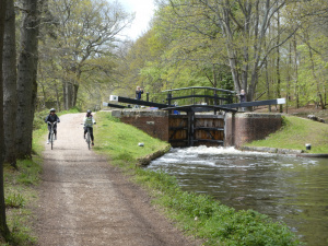 Activity at lock 21, Pirbright: Spin-off 8